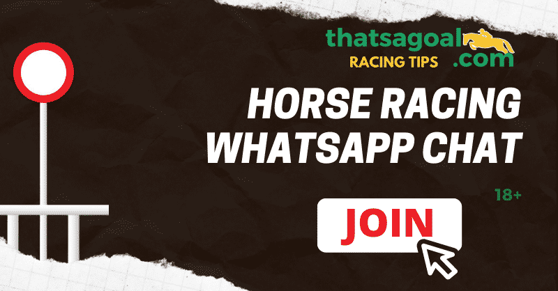 Horse Racing Whatsapp Chat