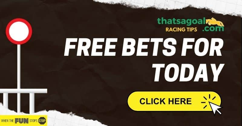 Horse Racing free bets
