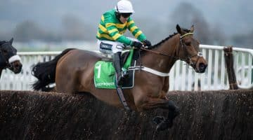Cheltenham Gold Cup tips
