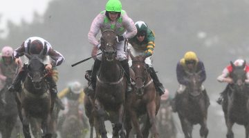 The Best 5 Cheltenham Festival 2022 Ante-post Bets to Place