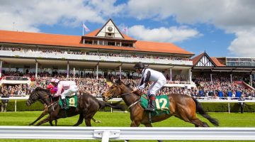 Chester races tips