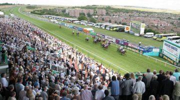 Brighton betting tips