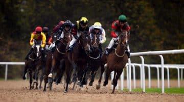 Horse Racing Tips: Four Value-for-money Picks for Thursday's Meetings