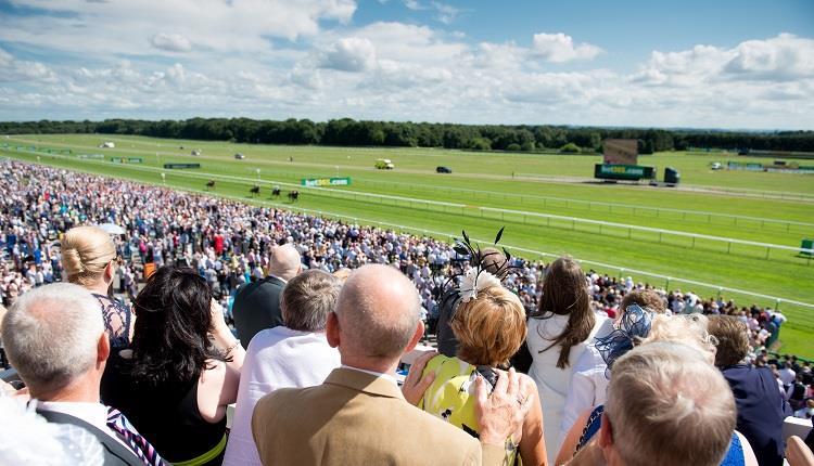 Haydock races betting tips