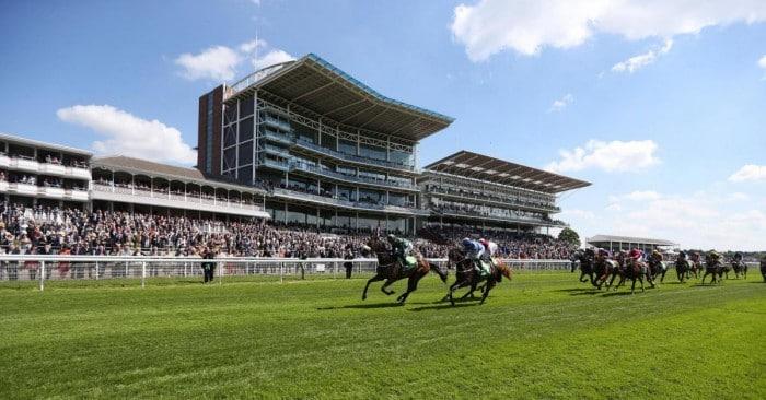 York races betting tips