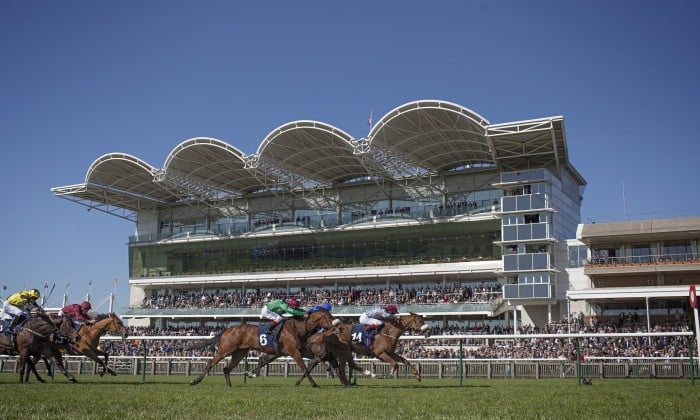 Newmarket races tips