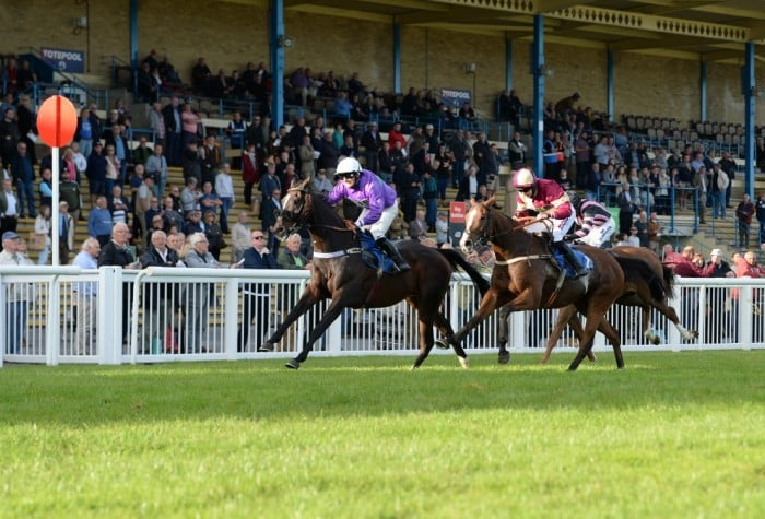 Newton Abbot betting tips