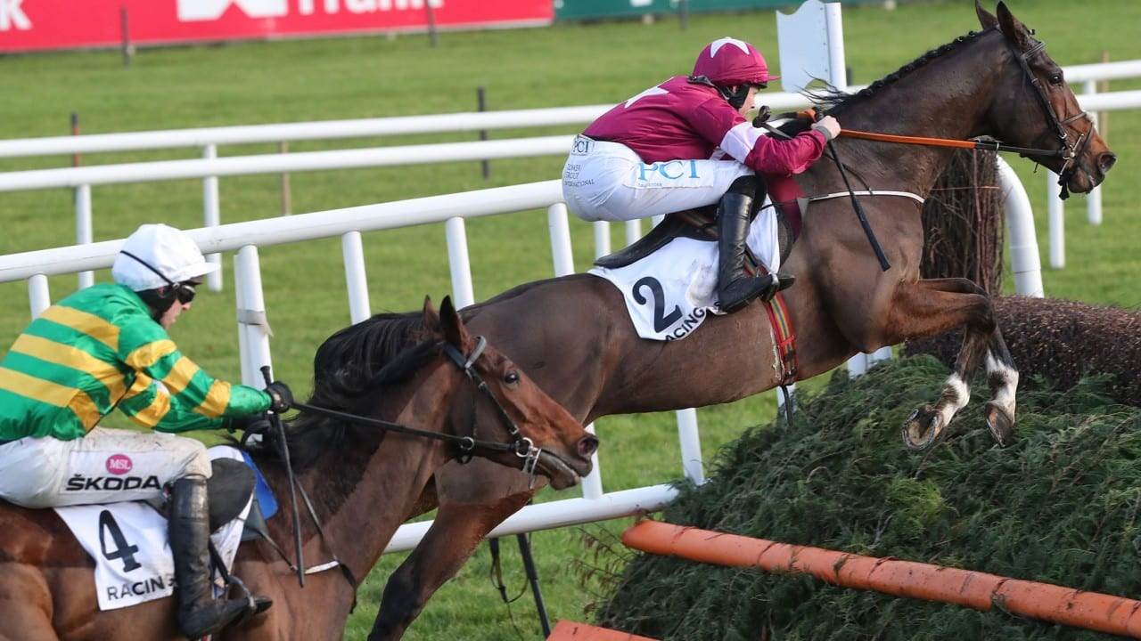 Cheltenham tips Arkle