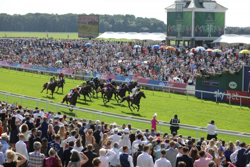 York racing betting tips